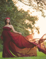 Kristyn Fitted gown with 2 long trains