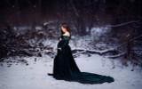 Darah Velvet Dress