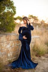 Ariella Velvet Gown