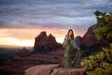 Donatella Lace Maternity Gown