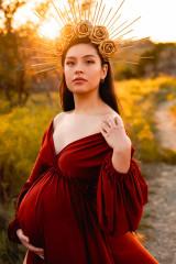 Sibella Gown