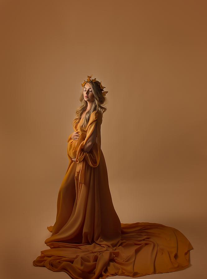 Zarina Gown