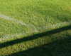 Football & Playground Mix
