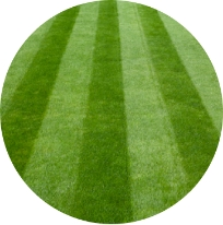 Turfgrass Services