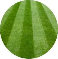 Turfgrass Services