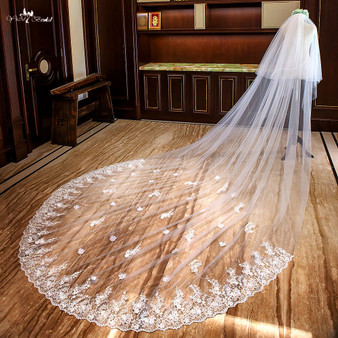affordable cathedral veil with lace