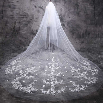 white cathedral veil with lace