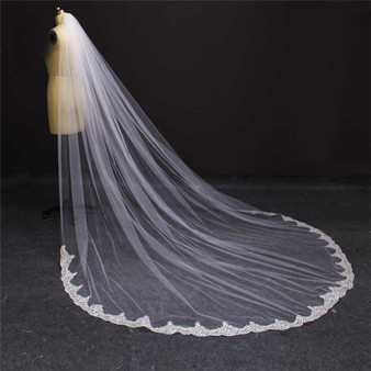 cathedral veil with lace