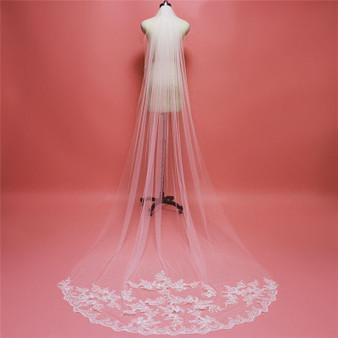 Veil with lace Appliques
