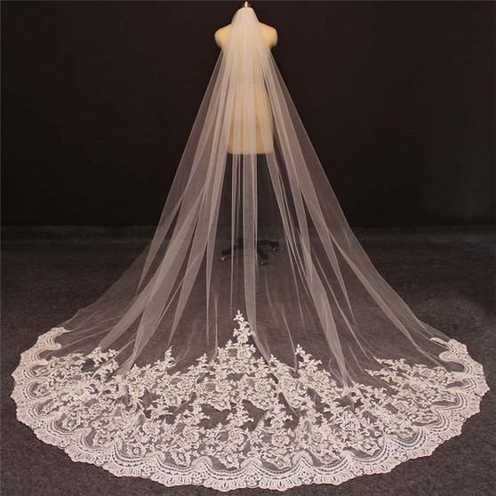 cathedral veil with train and lace