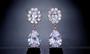 CZ Crystal Dangle Wedding & Prom Earrings in Rose Gold