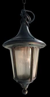 310 Glass Black Green Outdoor Hanging Light