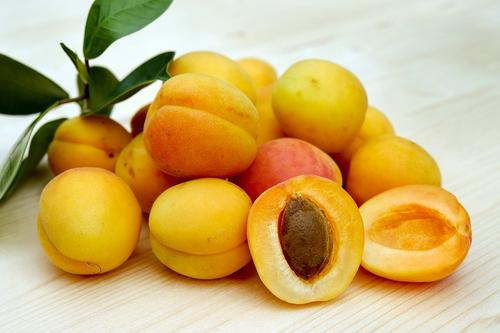 Apricot Kernel Oil 16 oz