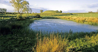 Lake & Farm Ponds