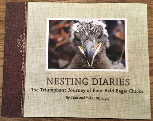 The Nesting Diaries