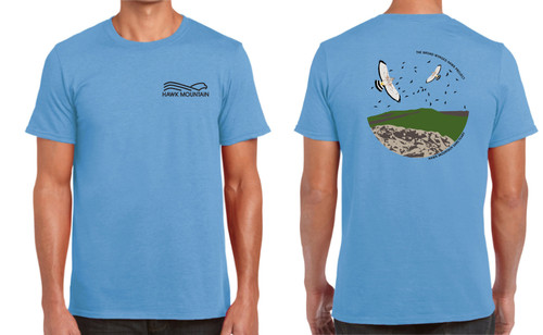 Broad-winged Hawk Project Tee
