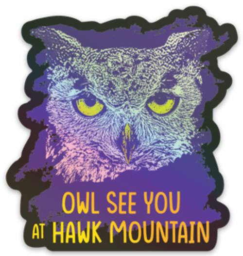Owl See You at Hawk Mountain Holographic Decal