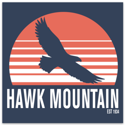 Sunset Eagle Silhouette Decal