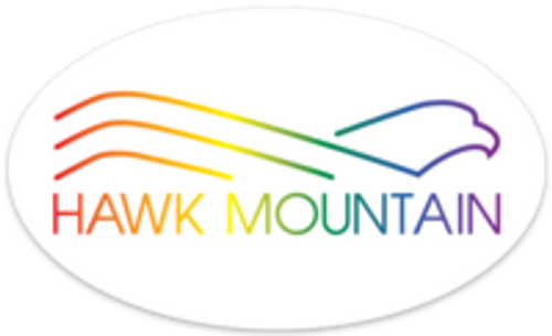 Rainbow Logo Decal