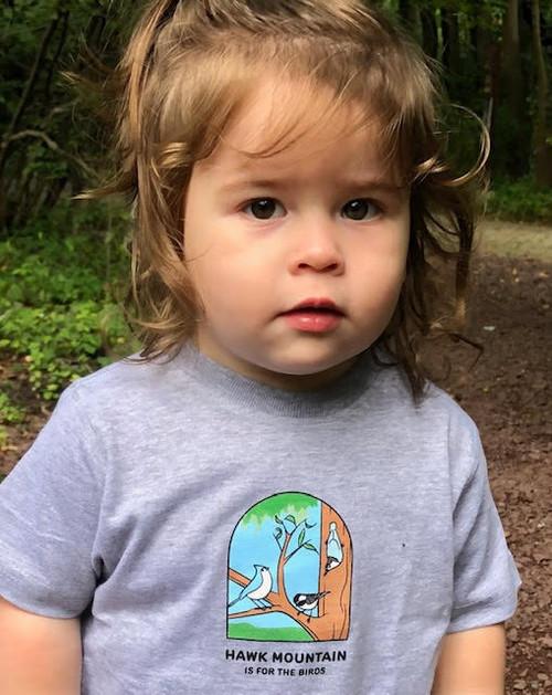 Toddler Hawk Mountain Tee