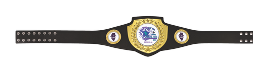 Black and Gold Victory Belt