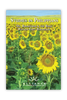 Studies In Philippians (mp3 Disc)