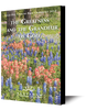 The Greatness and the Grandeur of God (mp3 Disc)