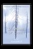 The Names of Christ PCRT 1979 (CD Set)