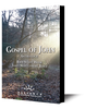 Christ in Galilee (mp3 download)