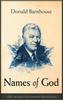 Names of God (pdf Download)