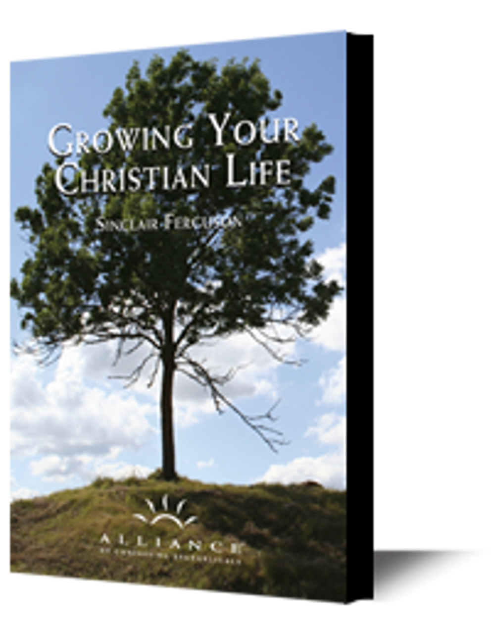 Growing Your Christian Life (mp3 Disc)