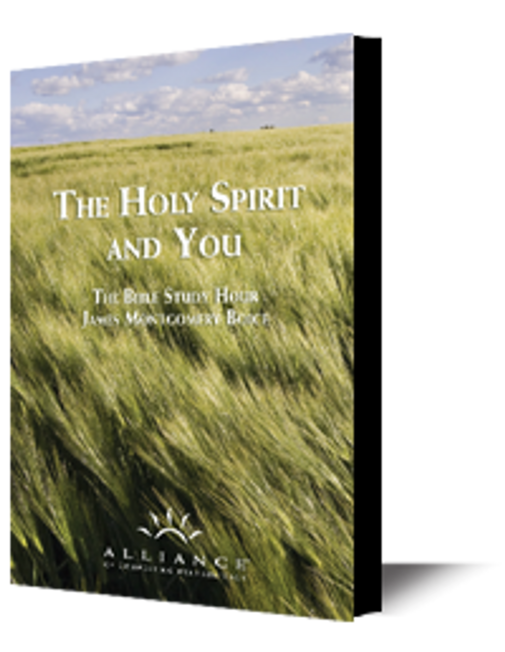 The Holy Spirit and You (DVD Set)