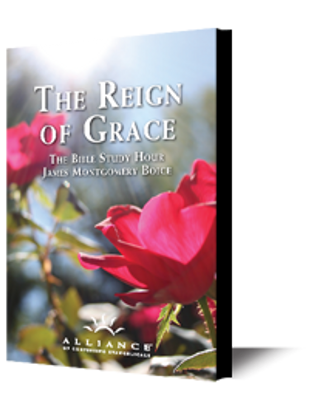 The Reign of Grace (mp3 Disc)
