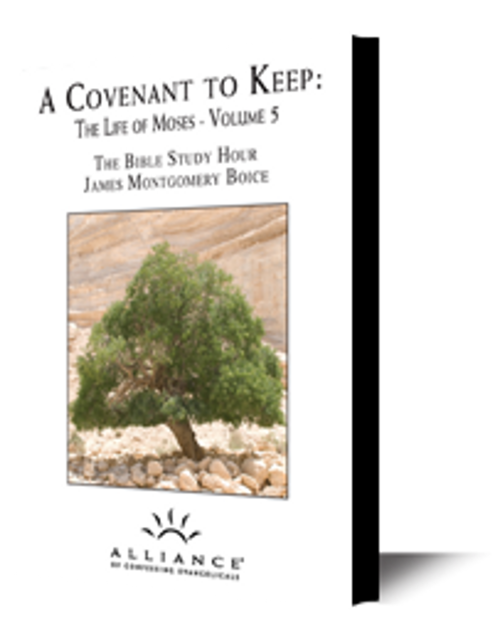 The Life of Moses, Volume 5: A Covenant to Keep (CD Set)