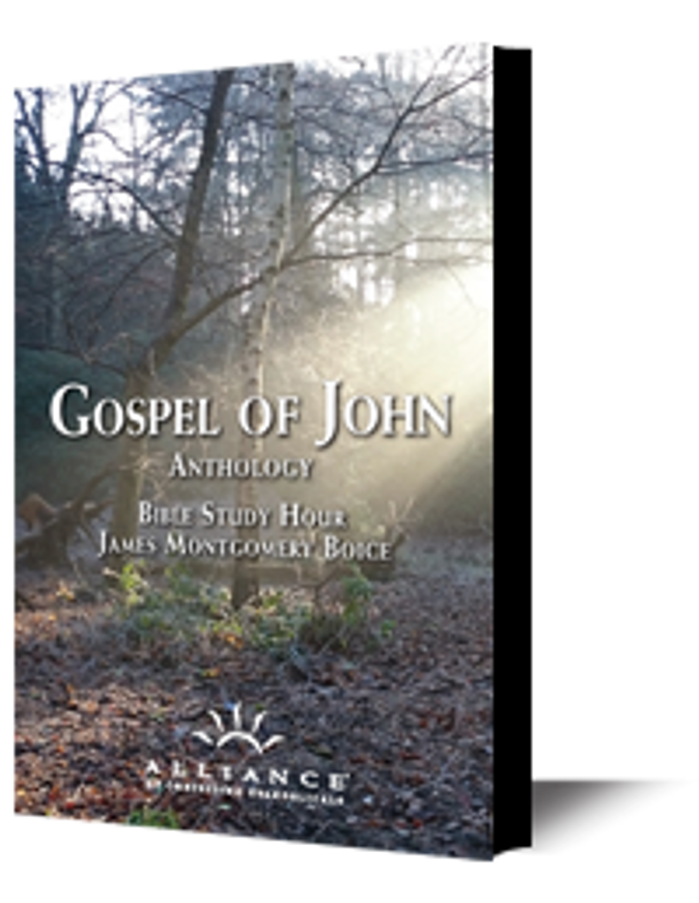 Introducing John's Gospel (mp3 download)