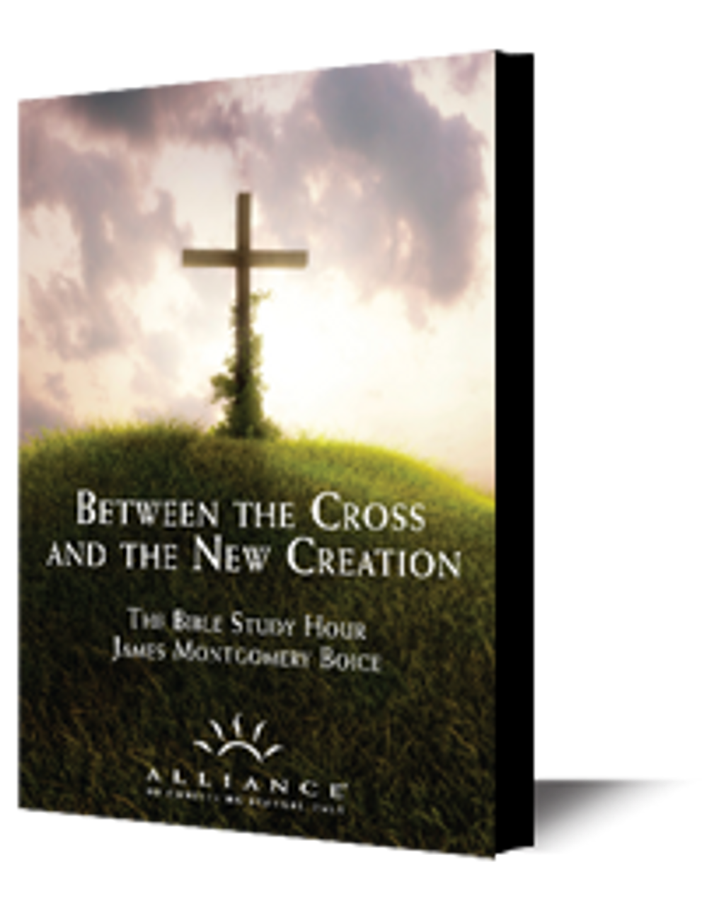 Between the Cross and the New Creation (mp3 disc)