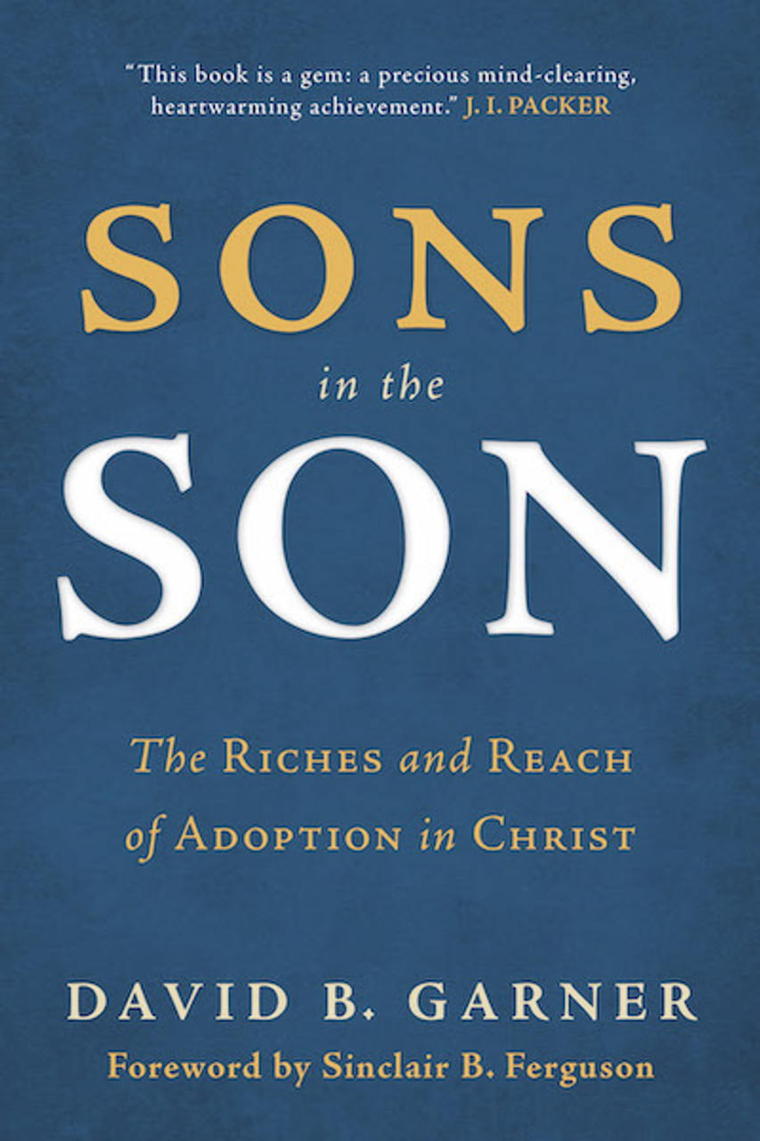 Sons in the Son (Bargain Paperback)