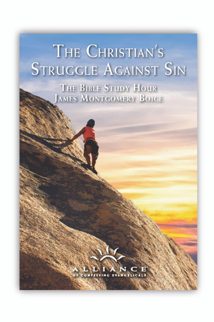The Christian's Struggle Against Sin (mp3 Disc)