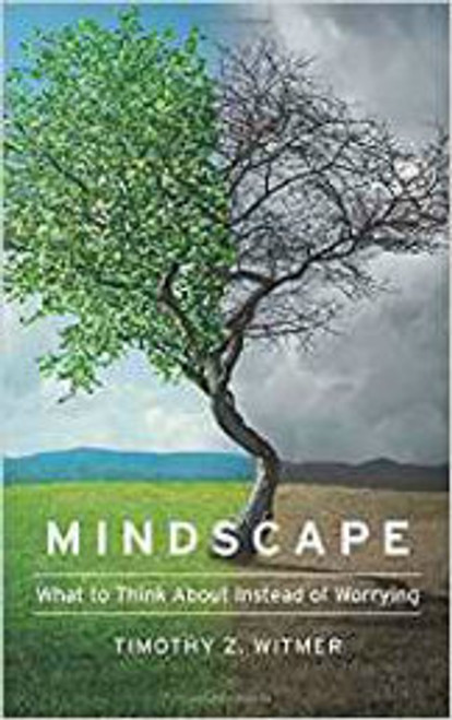 Mindscape: What to Think About Instead of Worrying (Paperback)