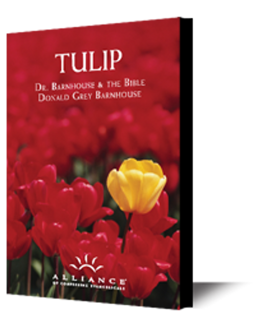 Tulip (mp3 Download Set)