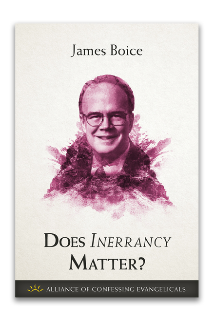 Does Inerrancy Matter? (Booklet)