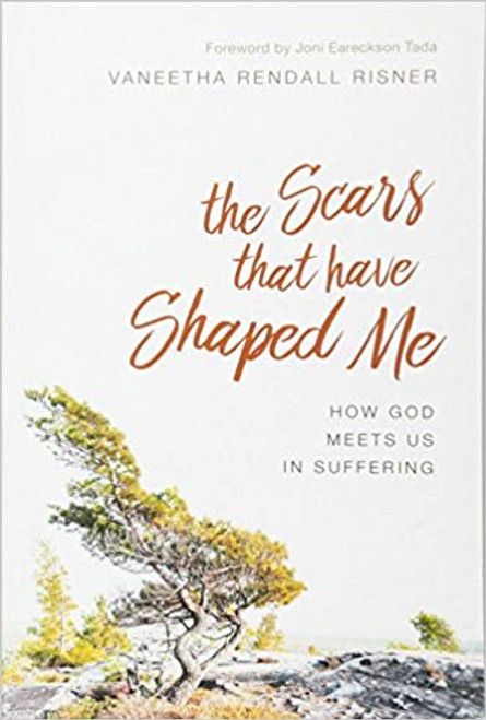 The Scars that have Shaped Me: How God Meets Us in Suffering (Paperback)