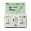 Flexi-Post Fiber Intro Kit
