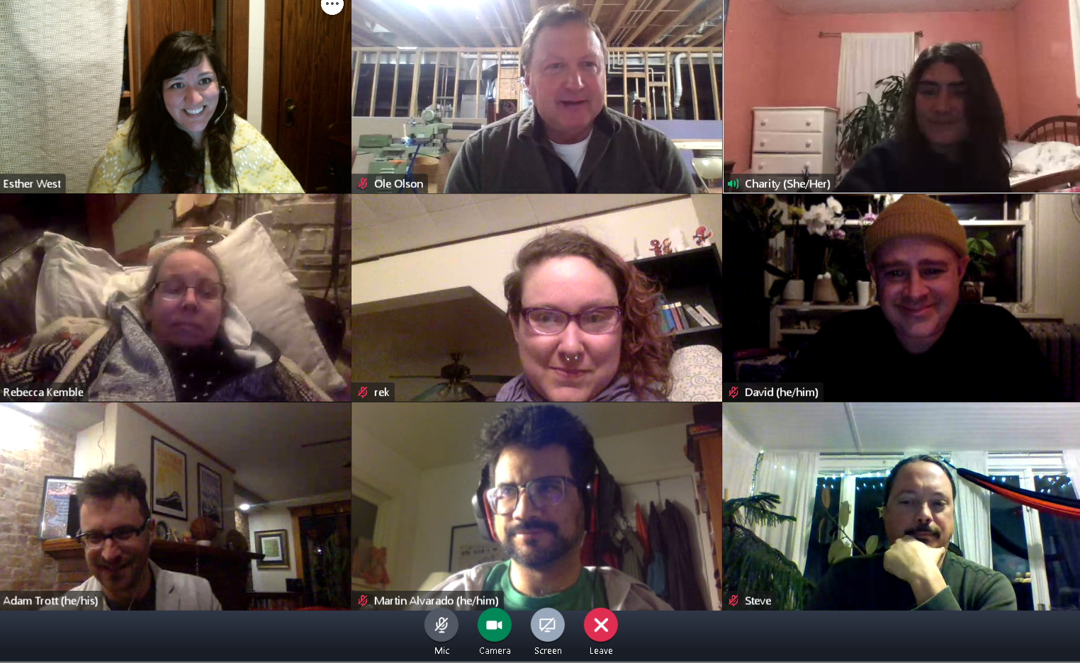 MadWorC's board on a video call