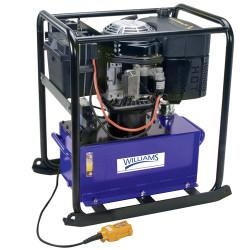 10 Gal Williams Diesel Engine Pump - 4Way-3Position - 5D73H10G