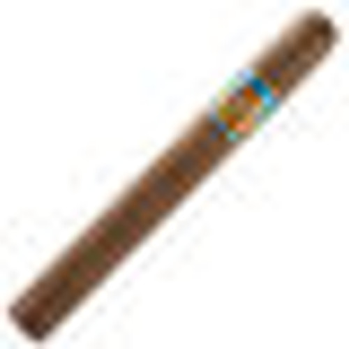 Rosa Cuba Governors 6.12 × 50.0 Pack of 10