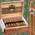 Ashton Cabinet Cigar Belicoso 25 Ct. Box