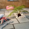 Lakeland Paving In situ image