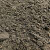 Mushroom Compost Swatch