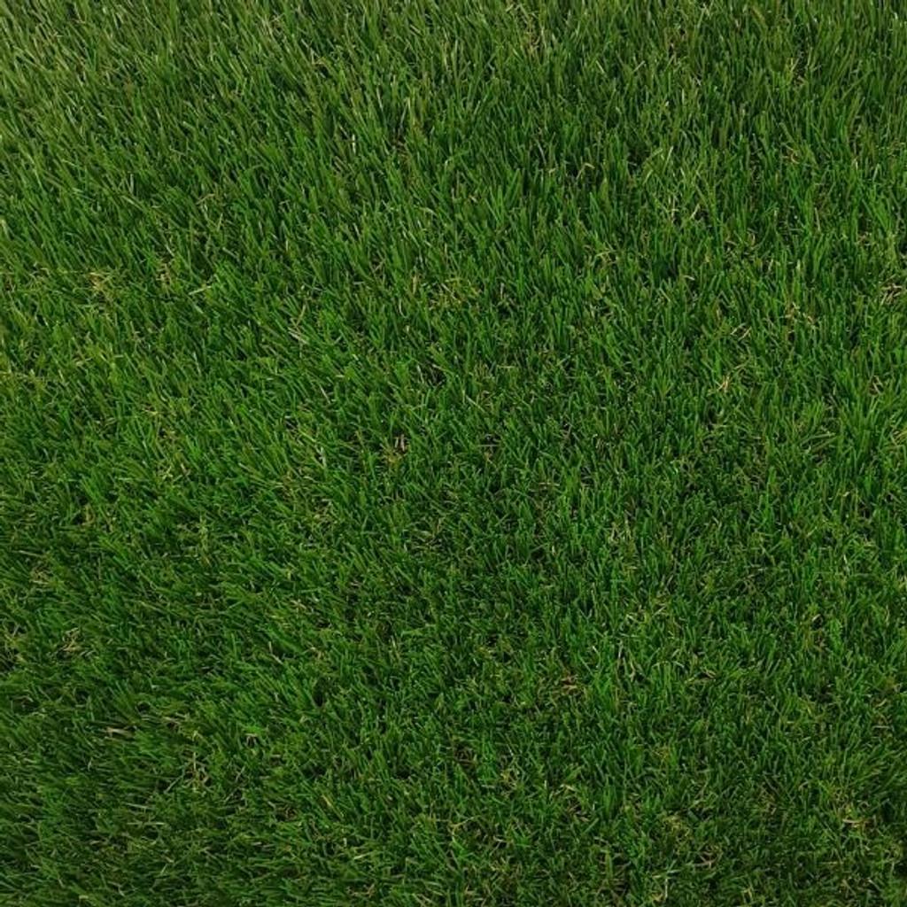 Kingsbarns Artificial Grass